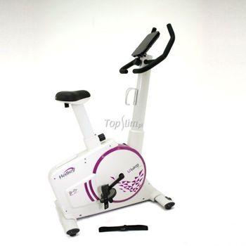 Rower stacjonarny treningowy Halley Fitness Upright STX